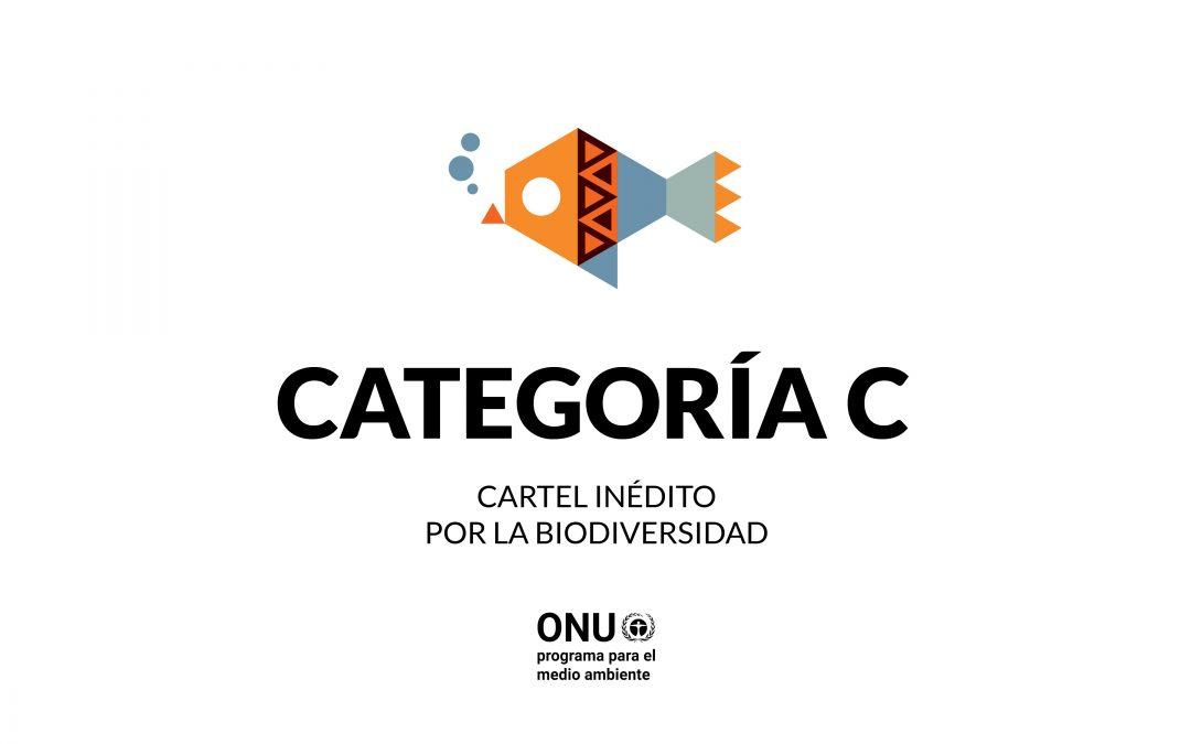 SELECCIONADOS CATEGORÍA C