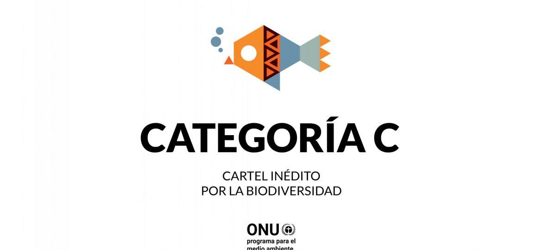CATEGRORIAS_WEB_COLOR_BLANCO_ING3