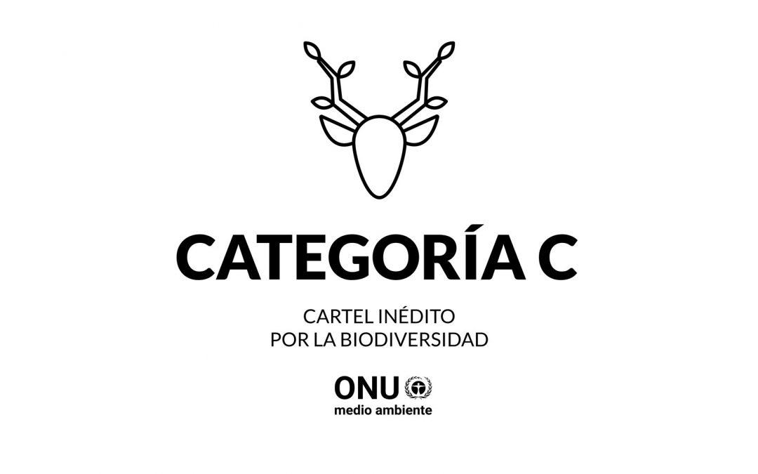 CATEGORÍA C